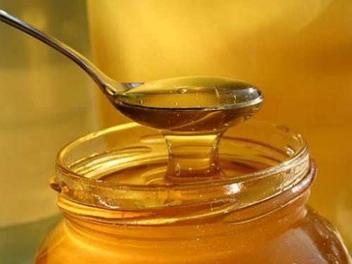 Катар відкрив ринок для українського меду та продуктів бджільництва