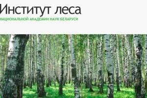 Спільні проблеми збереження лісів України й Білорусі