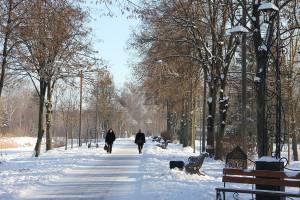 Зимовий парк. Луцьк.
