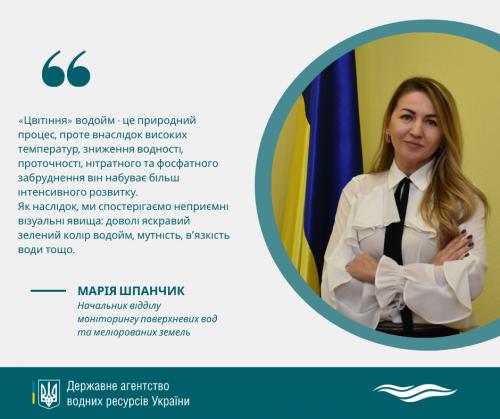 «Цвітіння» стає «хронічною хворобою» українських водойм