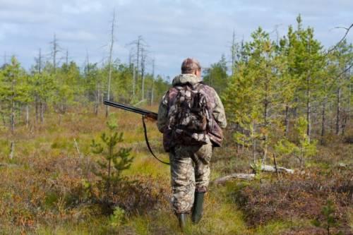 65 мільйонів використають на сервіс для мисливців та охорону мисливських угідь