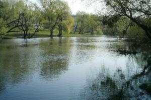 Скільки у наших річках шкідливих речовин?