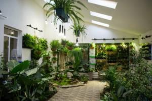 Зимовий сад у городоцькій школі вражає креативністю