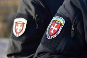 Самовільну порубку на Камінь-Каширщині виявили та розслідували оперативно