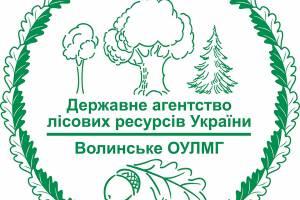 Виготовлення логотипів